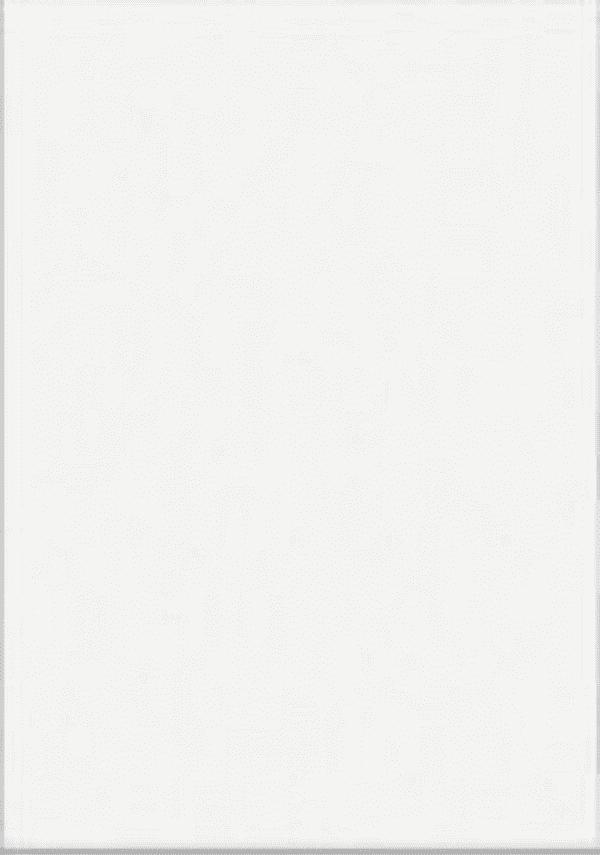 400x250 White Flat Matt